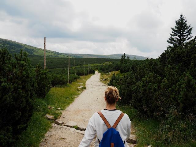 Luční bouda, Krkonoše, rašeliniště, příroda, trek, procházka