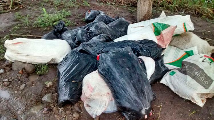 Hallan restos humanos embolsados en Omealca, Veracruz