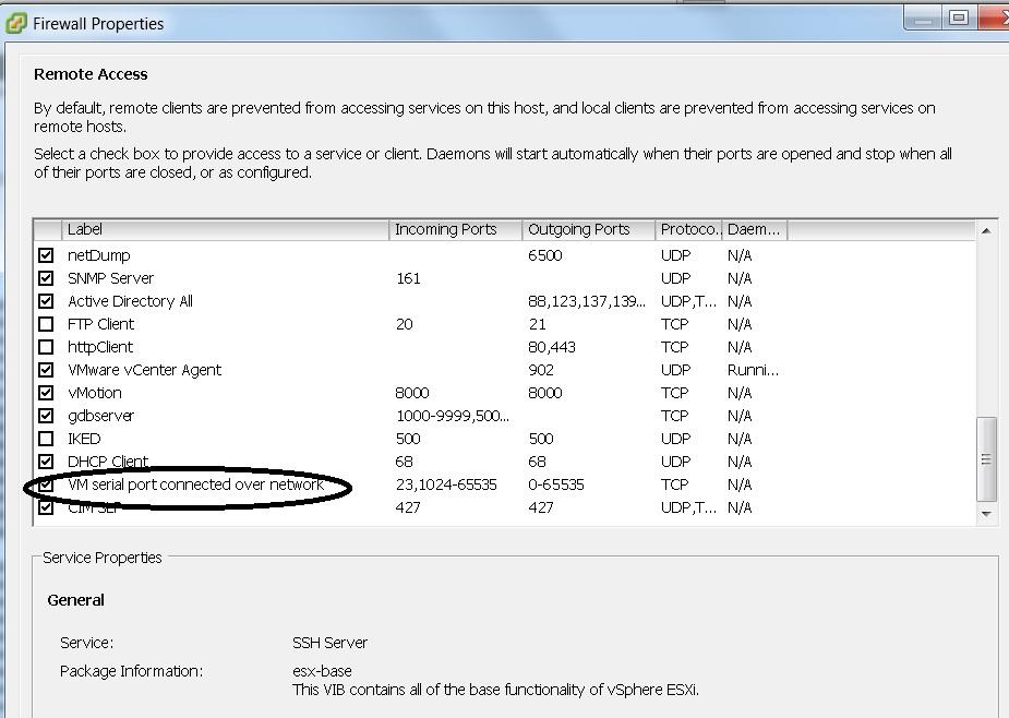 Access Virtual Machine through Console ( Serial Port