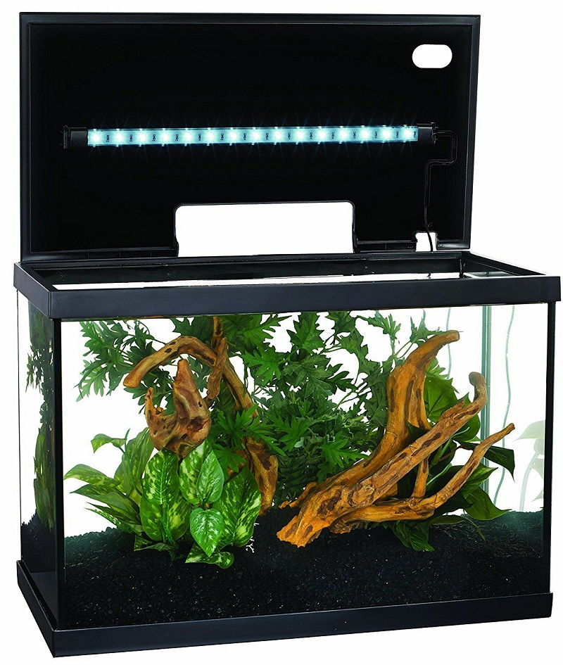 Betta Fish Tank Size - Marina LED Aquarium Kit