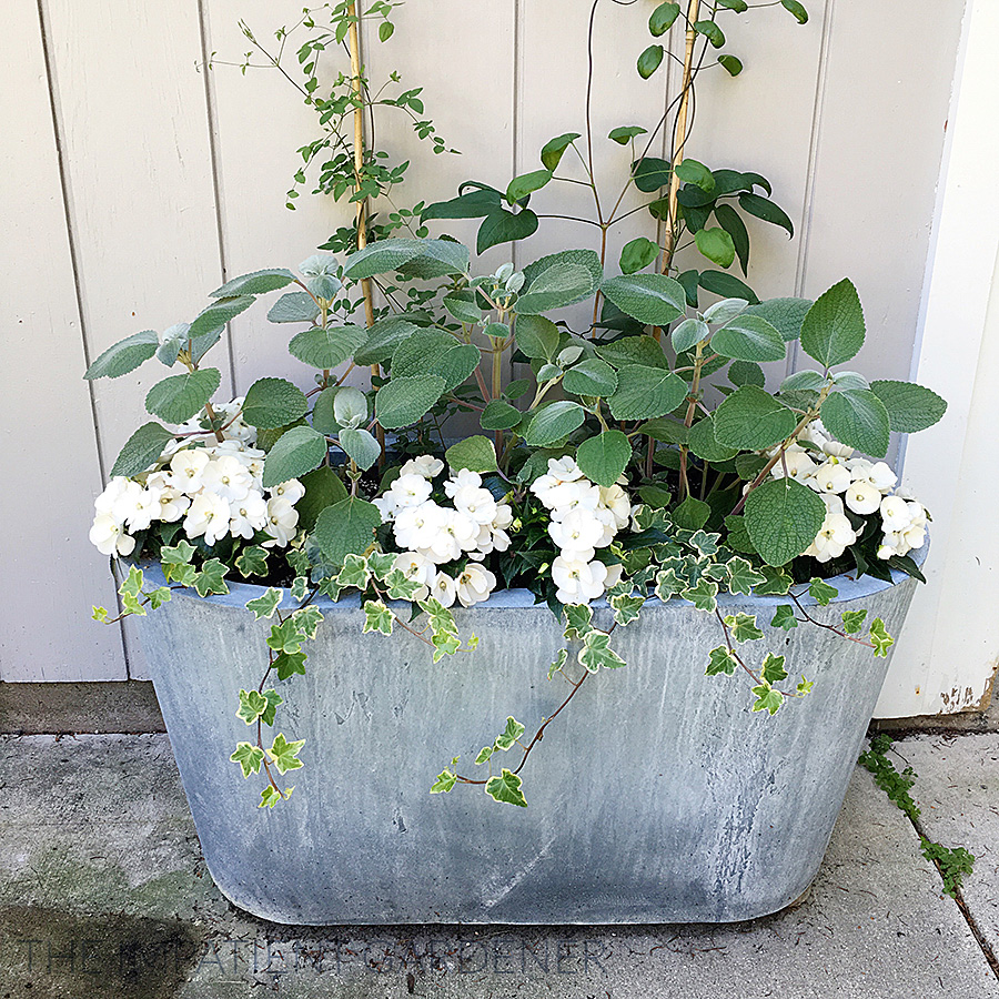Top Garden Trends For 2017: The Impatient Gardener