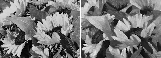 composing values study of sunflowers Jan-24-2019-greyscale reference next to study