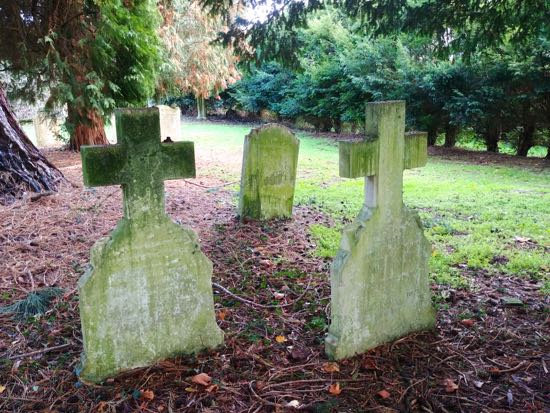 The headstones for 'Herby' and his parents, Annie and Henry Town Image by the North Mymms History Project, released under Creative Commons