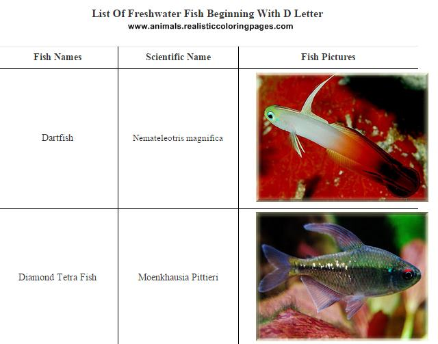 List of freshwater fish beginning with D