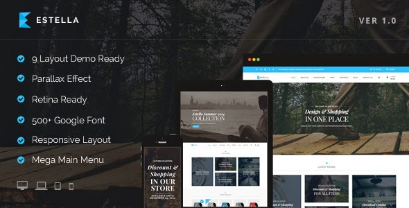 Best eCommerce Layouts Theme