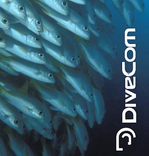 dicas-cacasubmarina | roupas de mergulho Divecom