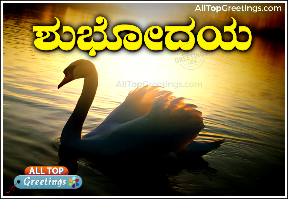 Good Morning Images For Lover In Kannada Kannada Subhoday Good