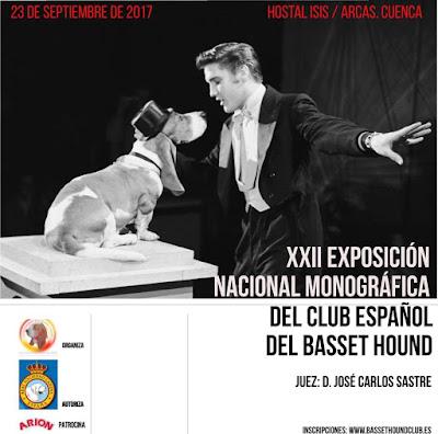Abierto el plazo de inscripción a la XXII Exposición Nacional Monográfica del CEBH 1
