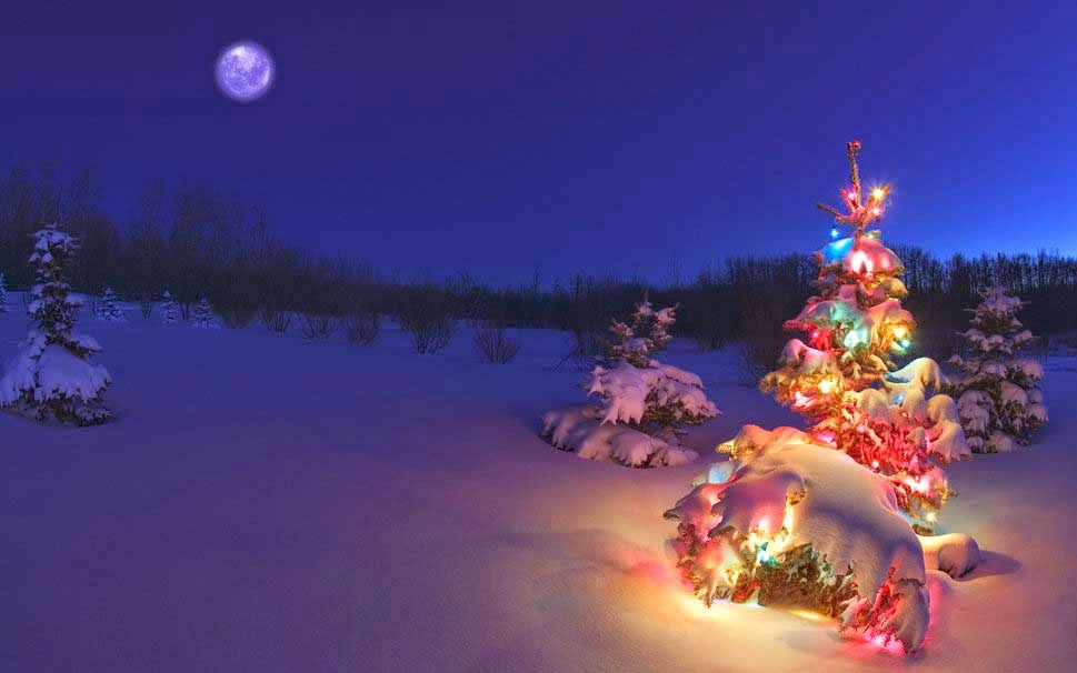 tree-snow-garland-good-night