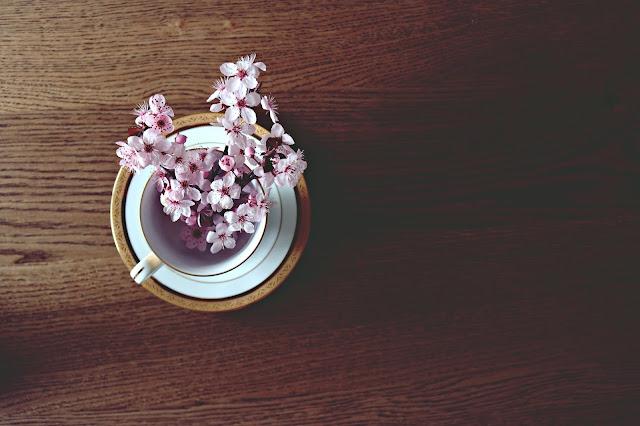 Hal Menarik Dari Bunga Sakura dan Manfaatnya untuk Kesehatan