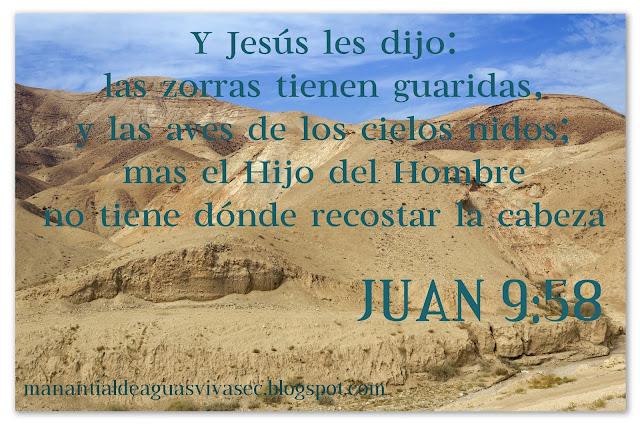 7 FRASES DE JESUS CON IMAGENES