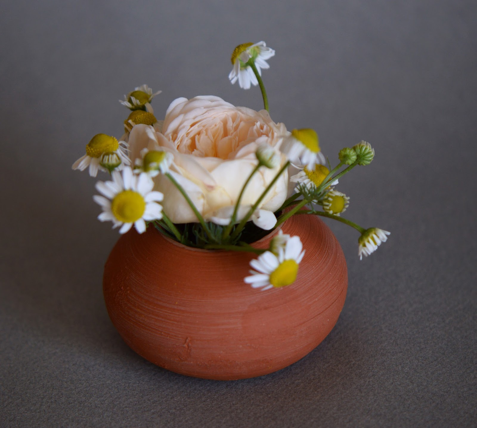 "rose ""crown princess Margareta"", chamomile, Monday Vase meme"