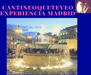 la experiencia Madrid de cantineoqueteveo es única en SEO
