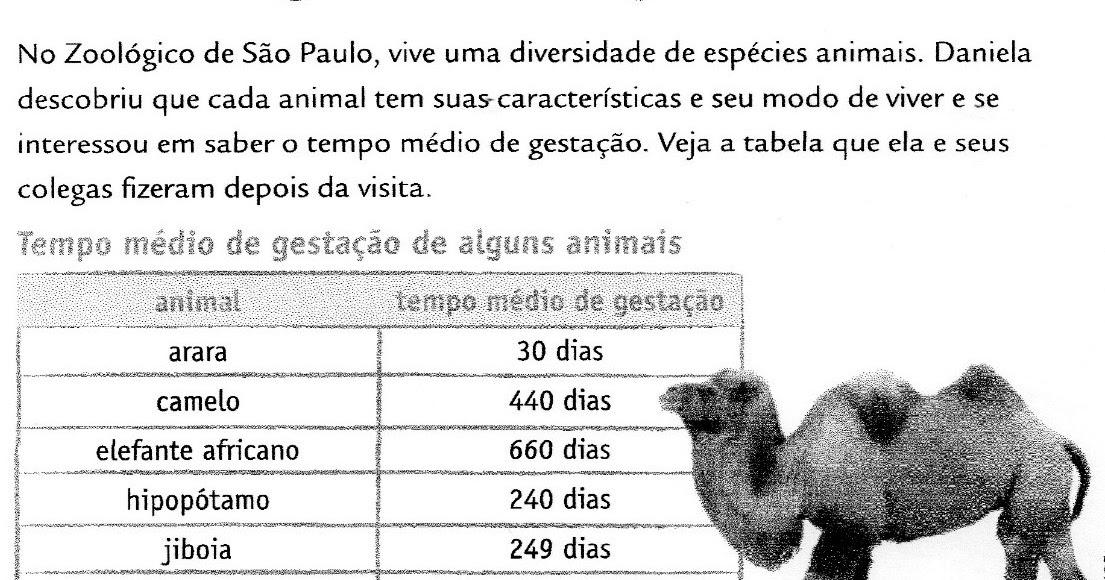 Roube sua atividade aqui!: Tempo de gestação de alguns animais