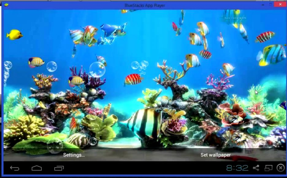 Koi Fish Live Wallpaper Free 1040x648 9741 KB