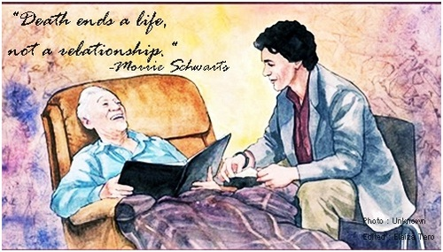 morrie s aphorisms Tuesdays with morrie study guide contains a biography of mitch albom, literature essays, quiz questions, major themes through morrie's lessons.