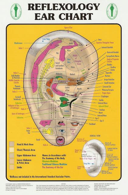 HEALING WAYS: REFLEXOLOGY EAR CHART