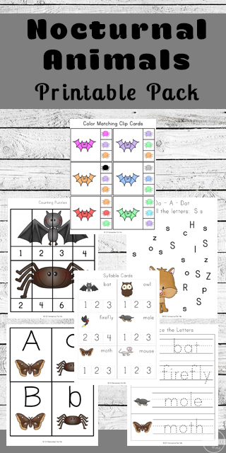 free nocturnal animals for kids worksheets. Black Bedroom Furniture Sets. Home Design Ideas