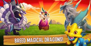 Dragon City.3