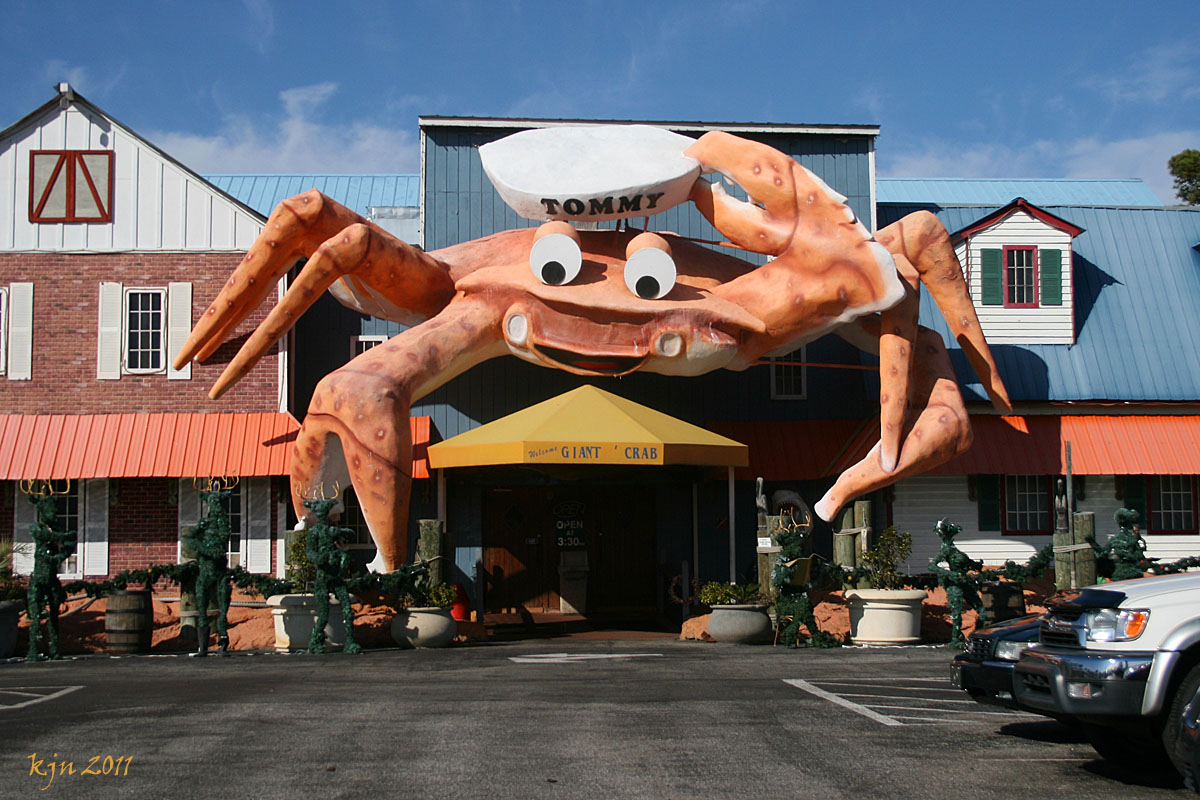 The Outskirts Of Suburbia Tommy Giant Crab