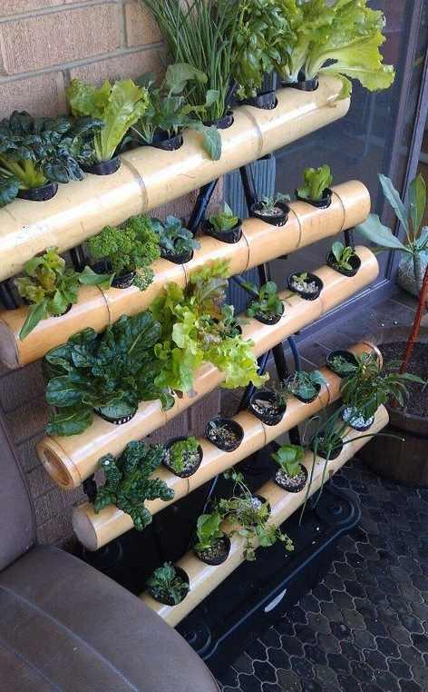 tempat tanaman unik dari bambu