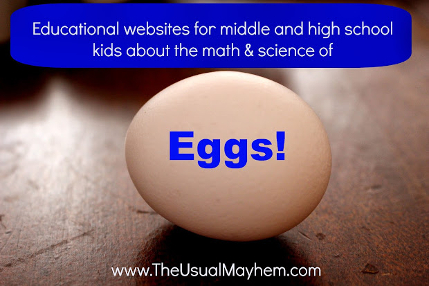 Eggs Educational Websites Middle And High School Kids
