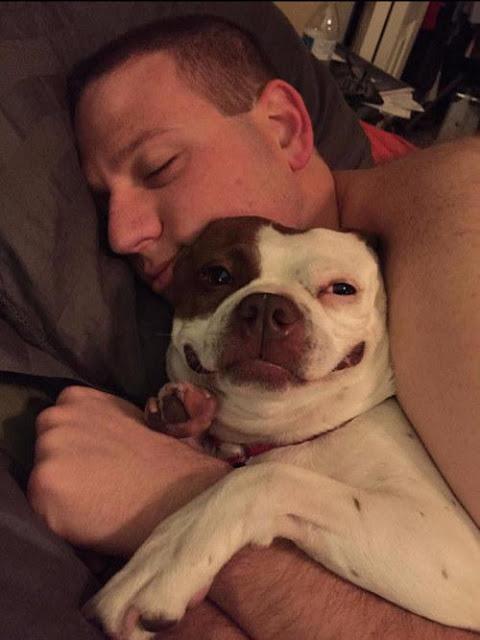 """Không thể nhịn cười với 15 chú chó """"phởn"""" nhất thế giới"""