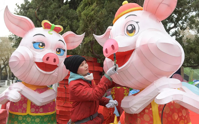 Year-of-the-Pig-Chinese-New-Year-2019-FU-RONG-GEMS
