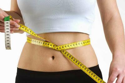 Diet alami dengan WMP asli dari HWI