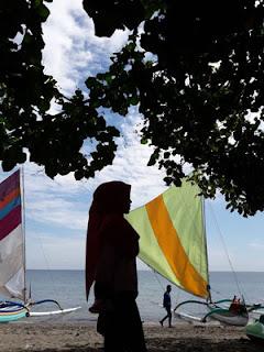 Pohon dan pasir di Pantai Pasir Putih Situbondo