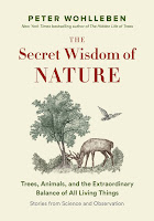 review of The Secret Wisdom of Nature by Peter Wohlleben
