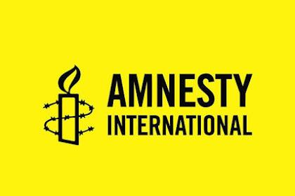 Dua Tahun Mandek, Amnesty International Akan Bantu Penyelesaian Kasus Novel