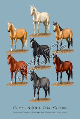 https://society6.com/product/horse-common-solid-coat-colors-chart_framed-print#s6-6626872p21a12v52a13v54
