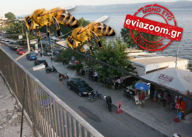 Νεκρός ψαράς στην Εύβοια από τσιμπήματα μελισσών που απελευθερώθηκαν ύστερα από τροχαίο!