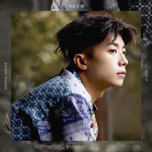 Jang Woo Young – Still Here – Single