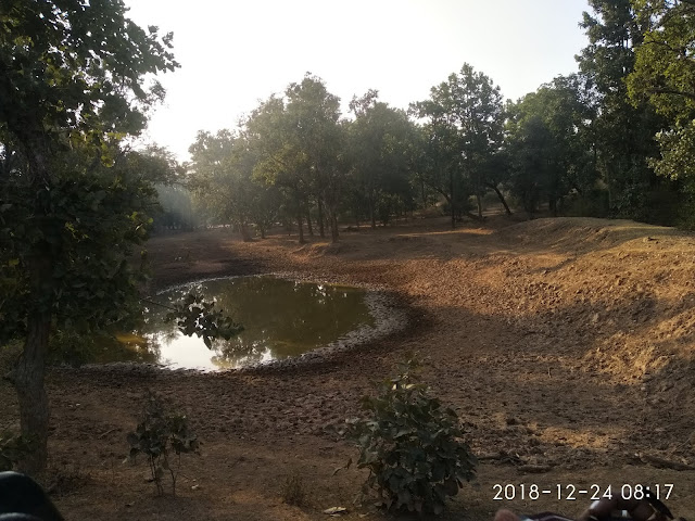 Natural Drinking Water Resource at Bandhavgarh Forest