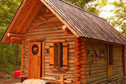 Mencoba Kehidupan di Hutan Belantara Ala My Self Reliance