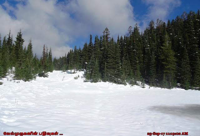 McNeil Point Shelter Hike Mt Hood