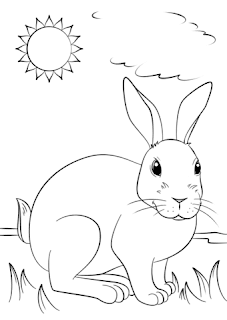 Cute Rabbit On Garden Coloring Page