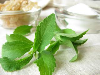 Obat Sakit Maag Herbal Alami Cepat Menyembuhkan