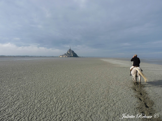 A cheval dans la Baie du Mont-Saint-Michel