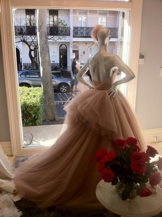 Chasing Rainbows Kissing Frogs Steven Khalil The Elie