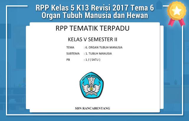 RPP Kelas 5 K13 Revisi 2017 Tema 6 Organ Tubuh Manusia dan Hewan