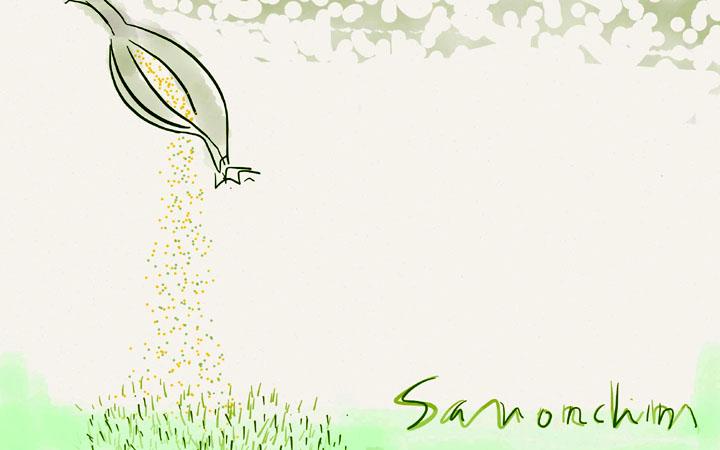 Cápsula de sementes, por Yoshio Sano