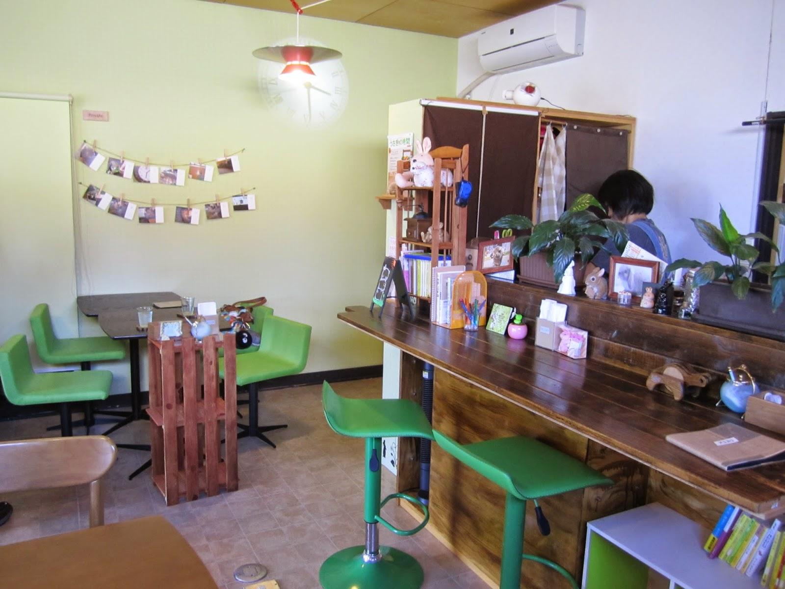 Towada Bunny Rabbit Cafe Usa Cafe Lovelies十和田市うさぎカフェ うさカフェラヴリーズ