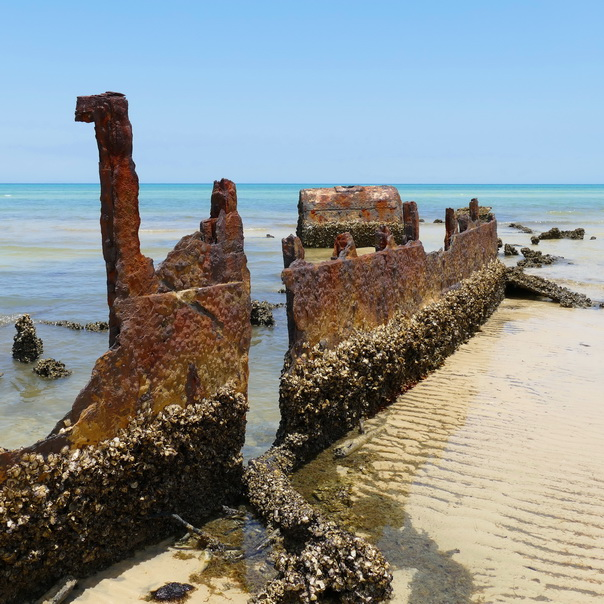 Normanby Schiff Wrack Wreck Moreton Island Gerippe Kessel Dampfschiff