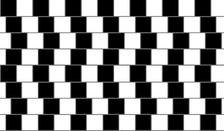 Curved lines optical illusion