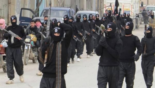 militan islam