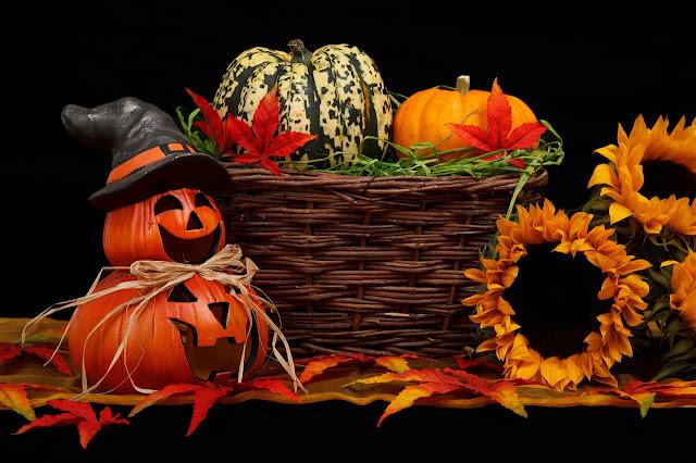 Halloween décoration citrouilles courges tournesol