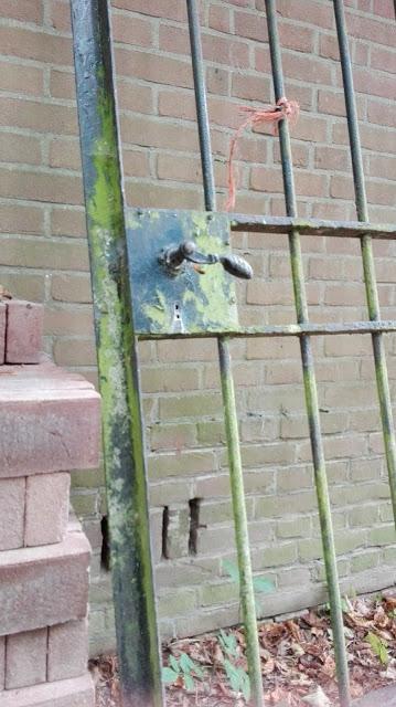 Losstaand hek, groen uitgeslagen